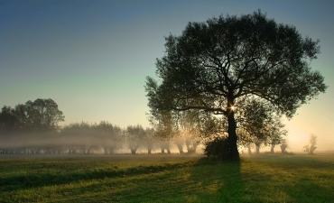Fotografia: Piotr Kardacz